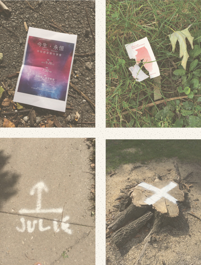 Typography in Litter